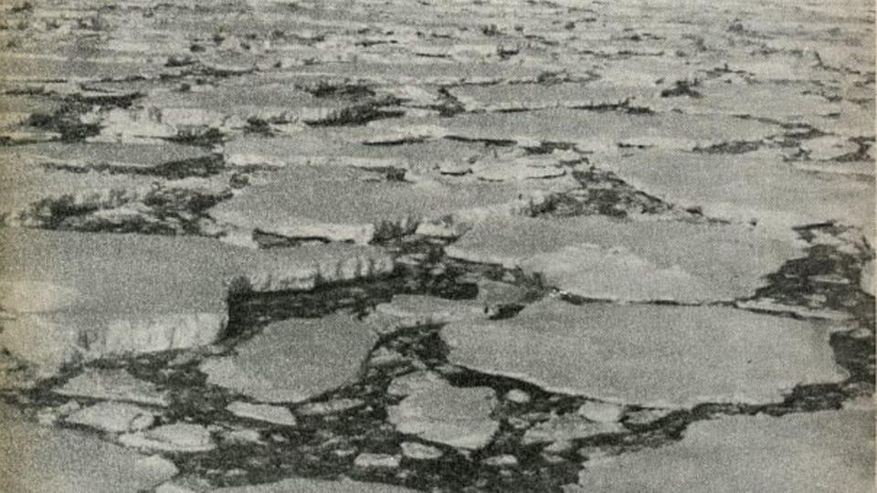 Foto repro: Námořníkem,  topičem a psovodem,  1968