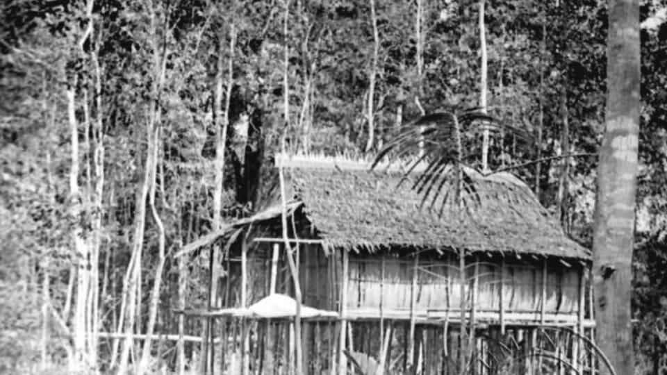 Borneo,   foto: E.S.Vráz,  de la colección del Museo Náprstek de Praga