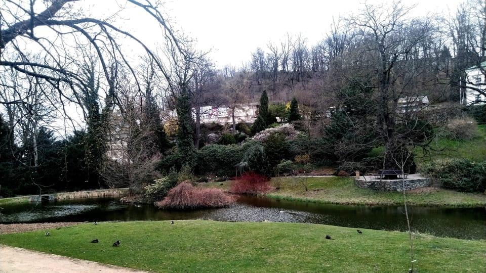 Jardín Botánico de Malešice,  foto: Dominika Bernáthová