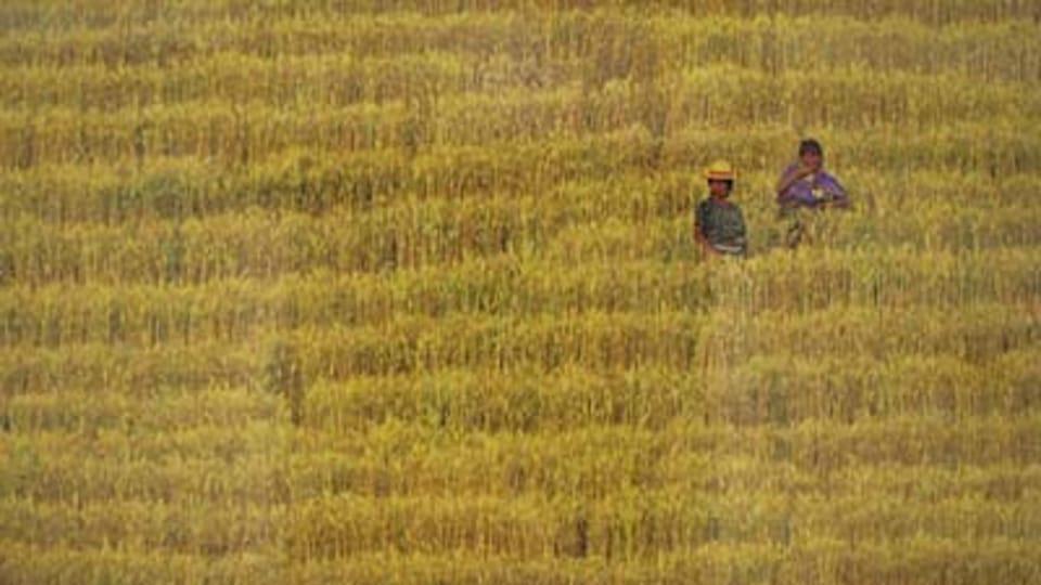 Guatemala,  foto: Cristóbal von Rothkirch
