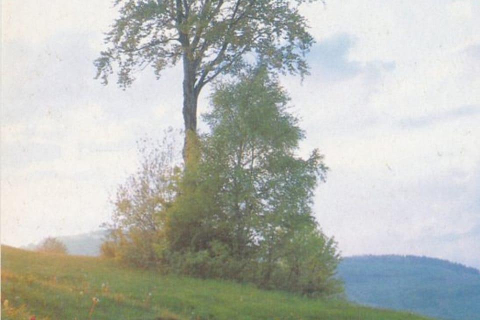 Tarjeta QSL 1992 | Foto: APF Český rozhlas