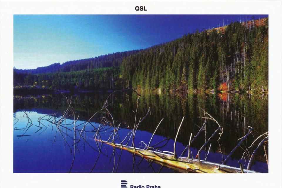 Šumava – Lago Prášilské,  foto: CzechTourism
