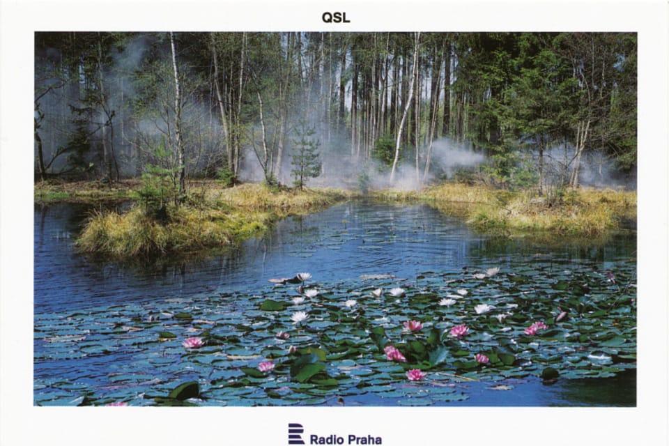 Vysoká cerca de Příbrami – Lago Rusalka,  foto: CzechTourism